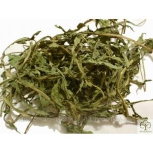 Одуванчик лекарственный листья