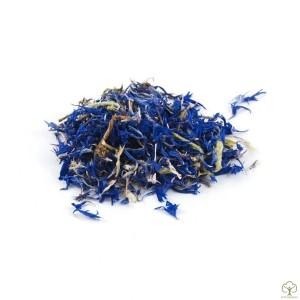 Василек синий цветки