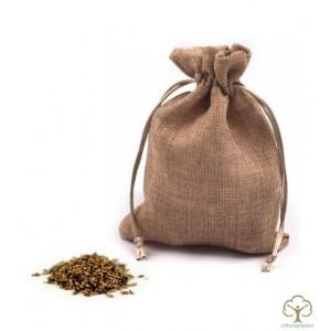 Семена и плоды Расторопши пятнистой